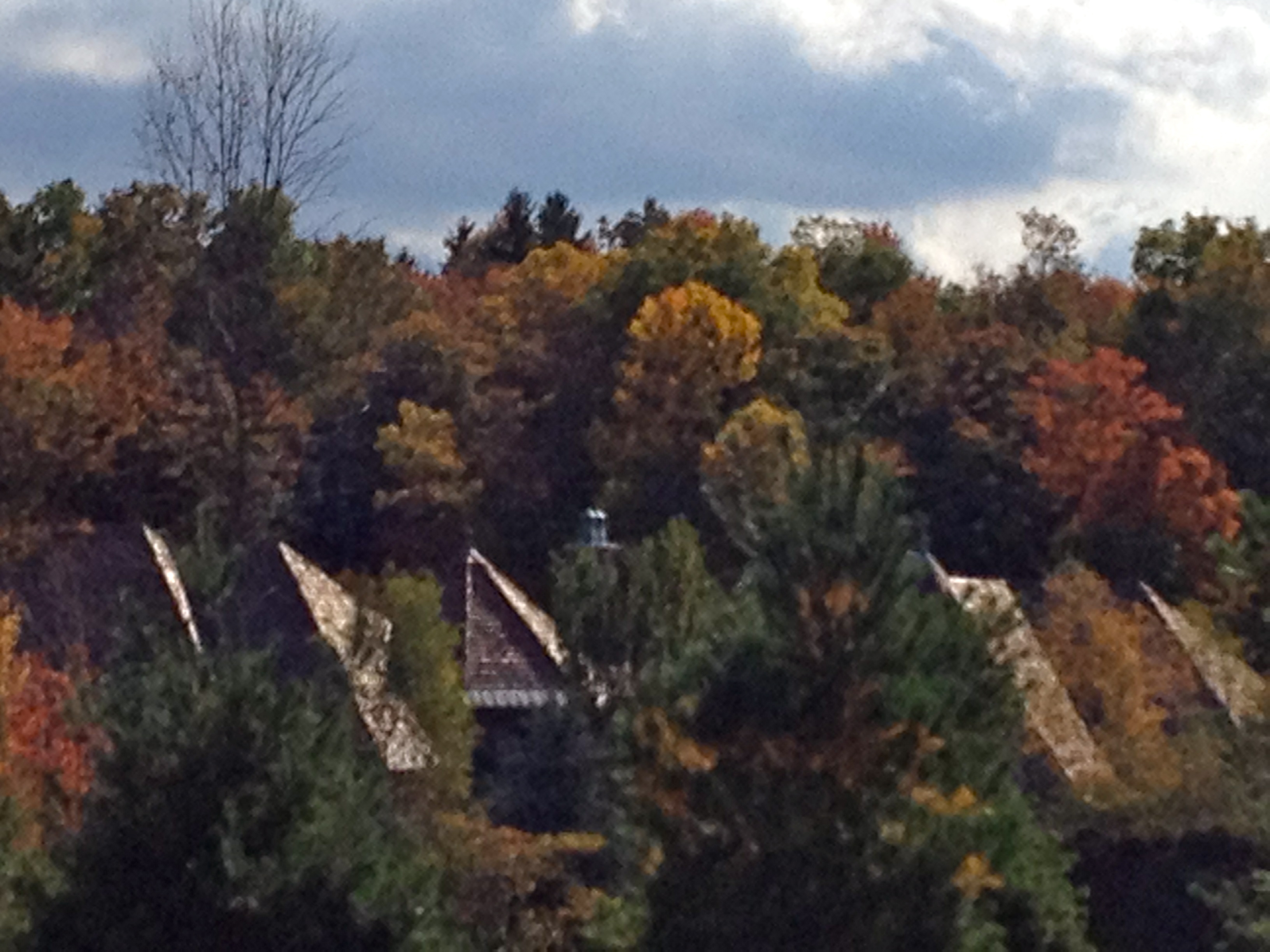 Roofs as the Northern Forest - Ecological Performance Standards